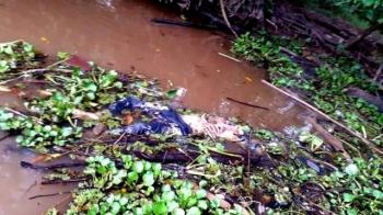 Warga Desa Rangga Ilung, Kecamatan Jenamas, Kabupaten Barito Selatan, menemukan mayat mengapung di Sungai Barito daerah Teluk Mahajandau, Rabu (12/4/2017) sekitar pukul 16.30 WIB.