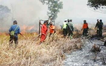 Penanganan kebakaran lahan dan hutan oleh TNI/Polri dan BPBD Kabupaten Kobar.