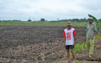 Petani di Desa Pualu Nibung, Kecamatan Jelai, Kabupaten Sukamara.