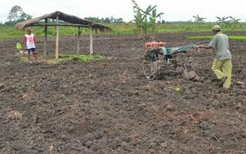Petani di Desa Pualu Nibung Kecamatan Jelai