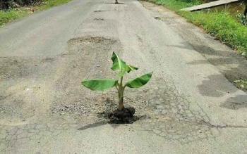 Jalan Samuda-Ujung Pandaran, Kotim, telah rusak meski baru selesai dikerjakan pada akhir 2016 lalu.