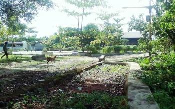 Kondisi Taman Rumah Betang Sei Pasah Dihiasi dedaunan kering Dan sampah, Sabtu (22/4/2017)
