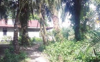 Tempat tinggal IM, pelaku pencurian terlihat kosong pasca kejadian pencurian yang dilakukannya di rumah tetangganya sendiri.