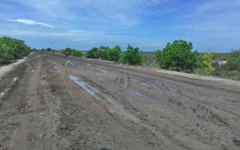 Jalan Kecamatan Pantai Lunci menuju Kecamatan Jelai, Kabupaten Sukamara.