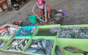 Seorang pedagang ikan di Pasar Sejumput sedang membersihkan ikan yang dia jual, Rabu (26/4/2017).