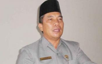 Wakil Ketua DPRD Kabupaten Pulang Pisau Idham Amur.
