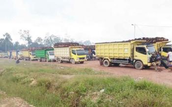 Tampak antrean truk angkutan kelapa sawit saat akan memasuki salah satu pabrik di Lamandau, beberapa waktu lalu.