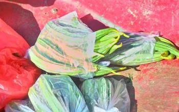 Gambas yang dijual Yasir dalam bungkusan-bungkusan plastik.