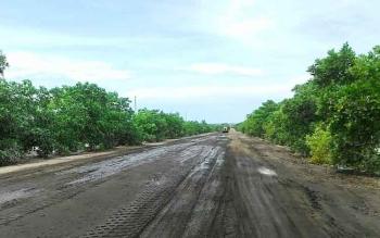 Jalan Kecamatan Pantai Lunci Kabupaten Sukamara.