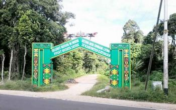 Gapura Desa Budaya Betung di tepi jalan trans Kalimantan Kasongan.