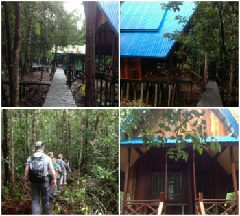 Wisatawan menikmati panorama alam Taman Nasional Sebangau