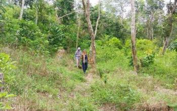 Perjalanan menuju hutan Sagonta Kota, di Kelurahan Baamang Hulu, Kecamatan Baamang, Kotawaringin Timur, tidak jauh dari pusat Kota Sampit. Hutan Sagonta Kota, yang bakal jadi wadah wisata ini, cocok untuk memicu adrenalin.