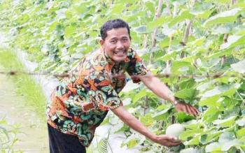 Kepala Desa Tanjung Terantang, Rahmat Basuki memegang buah melon hasil budidaya di lahan desa, Selasa (16/5/2017).