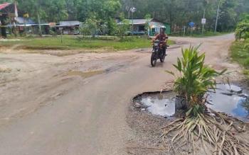 Warga meletakan tanaman di titik kerusakan Jalan Damang Gaman, Kuala Kurun, Kabupaten Gumas, Jumat (26/5/2017).