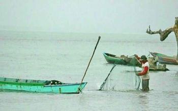 TANGKAP - Tampak salah satu nelayan di Pantai Kubu Kecamatan Kumai saat menangkap ikan di laut.