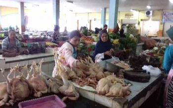 Penjual ayam kampung di pasar ikan pusat perbelanjaan mentaya (PPM) Sampit.