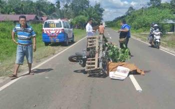 Kecelakaan lalu lintas yang menewaskan pengendara motor di Jalan Jenderal Sudirman KM 35 arah Sampit - Pangkalan Bun.