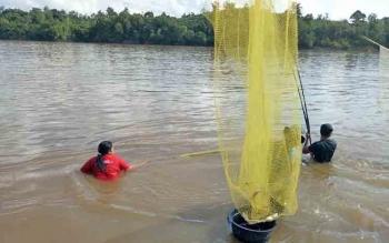 Sejumlah warga Muara Teweh, Kabupaten Barito Utara, menangkap ikan seluang dengan hauk di Sungai Barito, Jumat (9/6/2017).