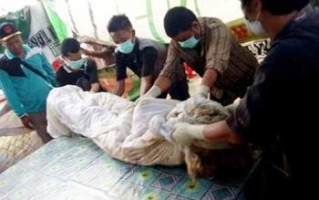 Dokter forensik sedang mengautopsi mayat Korban pembunuhan di Desa Rangga Ilung, Kecamatan Jenamas, Kabupaten Barito Selatan.