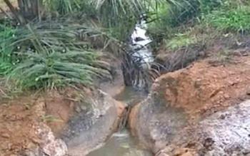 Limbah perusahaan perkebunan yang meluap.