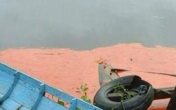 Tumpahan CPO di Sungai Cempaga.