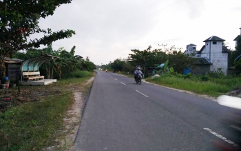 Salah satu kondisi jalan menuju Pantai Ujung Pandaran, Desa Ujung Pandaran, Kecamatan Teluk Sampit, Kotim, yang terlihat masih asri dengan tumbuhnya pepohonan di tepinya. \\r\\n