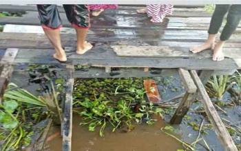 Jalan titian di Murung Keramat, Kapuas ambruk