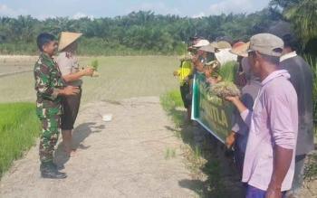 Polsek Balai Riam saat menggelar sosialiasi kepada petani sebelum menanam padi.