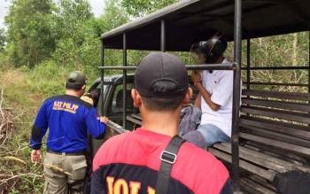 ML (19) saat dibawa menggunakan mobil patroli Satpol PP Kobar, Selasa (11/7/2017)