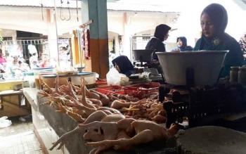 Pedagang Ayam di Pusat Perbelanjaan Mentaya (PPM), Sampit