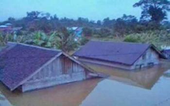 Plt Bupati Sakariyas Tinjau Banjir di Hulu Katingan
