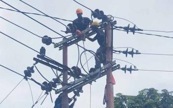 Teknisi PT PLN Rayon Sukamara saat melakukan perbaikan pada jaringan listrik.