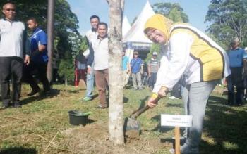 Bupati Kobar Nurhidayah menanam pohon pelindung di kawasan Pangkalan Bun Park saat merilis Gerakan Jumat Bersih, Jumat (21/7/2017).