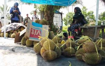 Seorang penjual buah durian di Jl Jendral Sudirman, Kecamatan Mentawa Baru Ketapang, Kotim saat melayani pembeli, Rabu (26/7/2017).