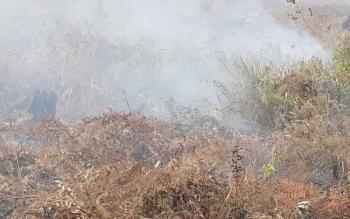 Kebakaran lahan yang terjadi di Desa Basirih Hilir, Kecamatan Mentaya Hilir Selatan, Kamis (3/8/2017).