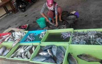 Pedagang di pasar membersihkan ikan.