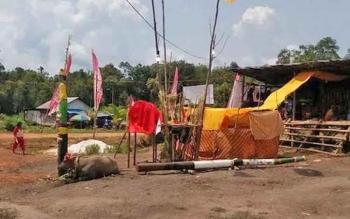 Kegiatan tiwah di Desa Tanah Putih Kecamatan Telawang tahun lalu