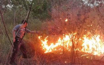 Kapolsek Pahandut AKP Rony Wijaya berusaha memadamkan api yang membakar lahan di Palangka Raya, beberapa waktu lalu.