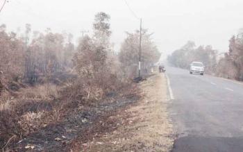 Kebakaran lahan di kanan-kiri ruas jalan trans Kalimantan di Kabupaten Pulang Pisau, Kalimantan Tengah, September 2015