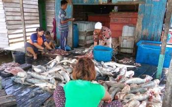 Warga Kecamatan Jelai saat membersihkan ikan laut hasil tangkapan nelayan untuk dijadikan ikan asin.
