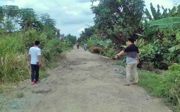 Beginilah jalan di Desa Tamban Baru Mekar