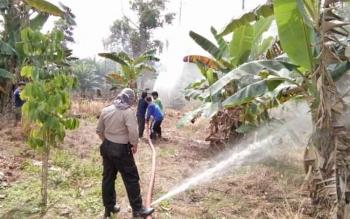 Tim terpadu saat memadamkan api di lokasi kebakaran, Dusun Liku, Nanga Bulik, Kecamatan Bulik, Kabupaten Lamandau, Rabu (23/8/2017).