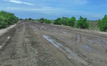 Jalan penghubung Kecamatan Pantai Lunci dan Kecamatan Sukamara.