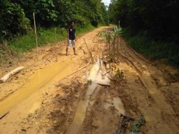 Jalan menuju Desa Tanjung Jariangau, Kecamatan Mentaya Hulu, Kabupaten Kotawaringin Timur, dalam kondisi rusak parah.\\r\\n\\r\\n
