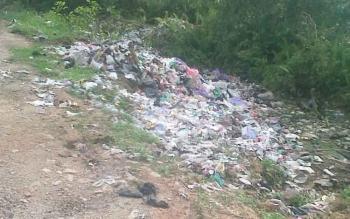 Berbagai macam sampah tidak saja dibuang ke jalan, namun juga dibuang ke parit kanan kiri jalan arah TPA hingga menutup parit di tempat ini