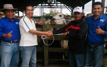 Koordinator CSR CBI Group Kharis Nuryanto menyerahkan secara simbolis hewan kurba kepada kepala desa Natai Baru, Amat Jamli, Senin (29/8/2017).