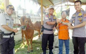 Wakapolda Kalteng Kombes Pol Dedi Prasetyo menyerahkan sapi kurban kepada Ketua PWI Kalteng Sutransyah didampingi Irwasda Kombes Pol Beno Louhenapesi dan Kabid Humas Polda Kalteng AKBP Pambudi Rahayu, Kamis (31/8/2017).