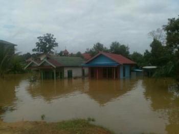 Banjir di Katingan Makin Meluas