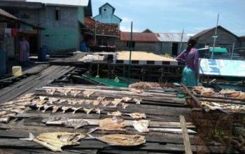 Nelayan Sukamara menjemur ikan asin