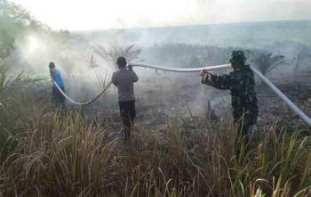 Petugas memadamkan api yang menghanguskan perkebunan sawit di Kecamatan Parenggean
